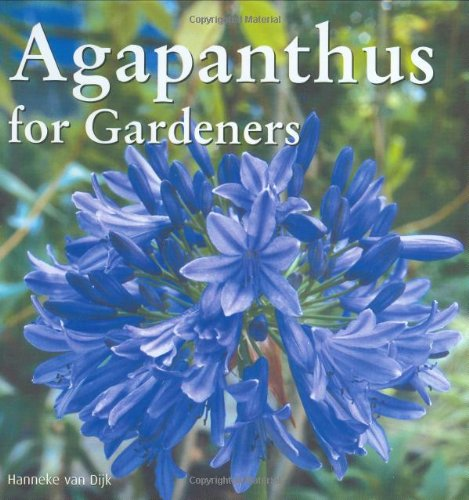 Agapanthus For Gardeners front-705818