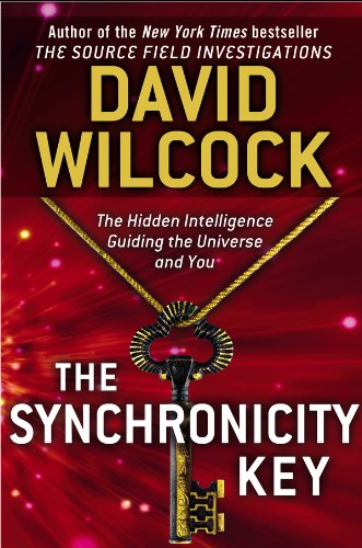 The Synchronicity Key: The Hidden Intelligence Guiding the Universe and You Picture