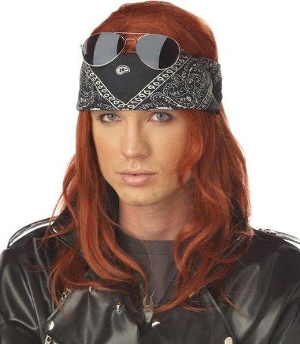 California Costumes Men's Hollywood Rocker Wig