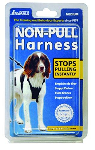 Company-Of-Animals-Sporn-Non-Pull-Harness-M