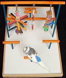 Parakeet / Lovebird Playgym (Freshman)