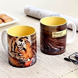 Hot Muggs Wild Focus Slurrp Ceramic Tiger Mug, 350ml