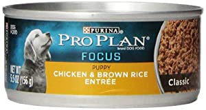 Purina Pro Plan Puppy Food, Chicken and Brown Rice, 5.5-Ounce Cans (Pack of 24)