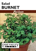 Lake Valley 399 Salad Burnet Heirloom Seed Packet