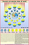 Phases Of The Moon - Geography Chart (English - Hindi Combined)