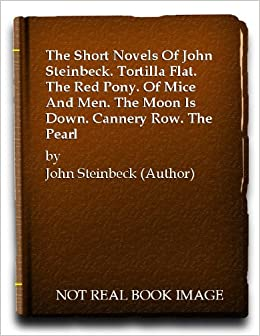 the use of vivid imagery in the novel cannery row by john steinbeck Tortilla flat / the moon is down / the red pony / of mice and men / cannery row / the pearl by john steinbeck  john steinbeck)novel:  steinbeck uses vivid.