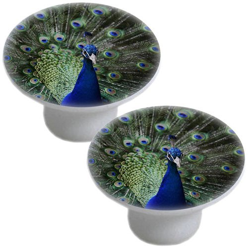 Set of 2 Beautiful Peacock Ceramic Cabinet Drawer Pulls Knobs