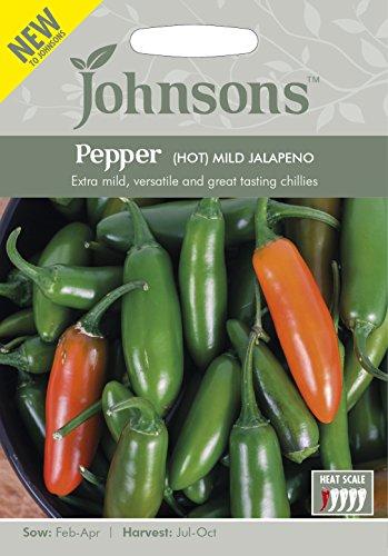 JOVE 英国ジョンソンズシード Pepper (HOT) MILD JALAPENO ペッパー(トウガラシ)・マイルド・ハラペーニョ