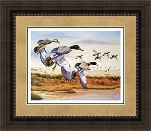 Amazon Com A Bluebird Day By Robert Dudek Limited