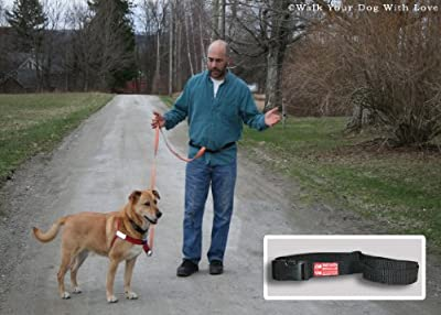 Zen Hipster Walking Belt/ Dog Running Belt- The World's Best Dog Walking Tools