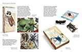 Download Textile Nature: Textile Techniques and Inspiration from the Natural World