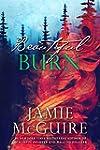 Beautiful Burn: A Novel (The Maddox B...