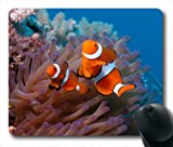 Underwater Kingdom Little Fish Mouse Pad