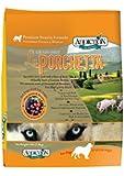 Addiction Premium Protein Adult Dry Dog Food, La Porchetta, 4 Pounds