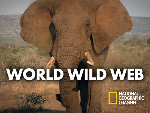 World Wild Web Season 1