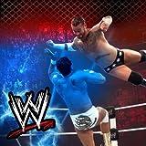 WWE Powerful Bounce Dec Pillow