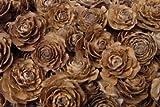 Cedar Wood Rose Flowers