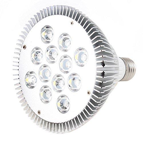 110V 12x2W Dimmable Par38 Spot LED Lampe Ampoule E27 Blanc Chaud