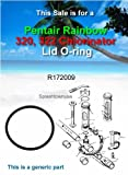 Pentair R172009 Cap O-Ring Replacement Pool and Spa Filter and Feeder