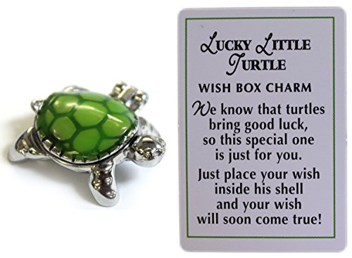 lucky-little-turtle-wish-box-charm-with-story-card