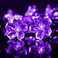 Ecandy 50 LED Icicle Lights Solar Powered Blossom Flower Garden String Fairy Lights/ LED Waterproof Decorative Lights for Outdoor, Garden, Patio, Christmas, Xmas Tree, Holiday Party, Purple from Lighting EVER