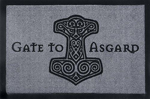 Gate To Asgard Zerbino multicolore