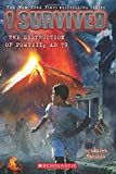 img - for I Survived the Destruction of Pompeii, AD 79 book / textbook / text book