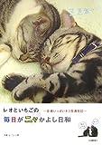レオといちごの毎日がニャかよし日和—愛情いっぱいネコ写真日記