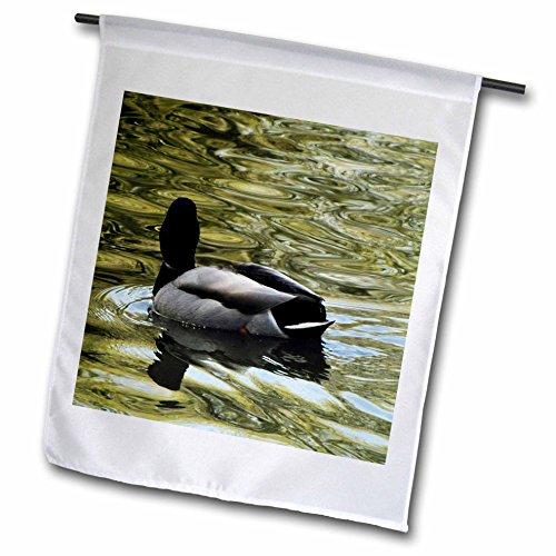 Krista Funk Creations Migratory Birds - Mallard Duck Swims Away - 18 x 27 inch Garden Flag (fl_18562_2)