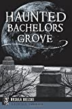 Haunted Bachelors Grove (Haunted America)
