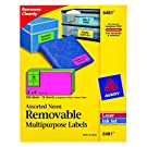 Avery Multipurpose Labels, Removable, Assorted Neon, 2 x 4 Inches, Pack of 120
