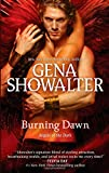 img - for Burning Dawn (Angels of the Dark) book / textbook / text book