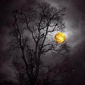 Dark Moonlight EP [Explicit]