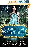 Accidental Sorceress (Hardstorm Saga Book 2)