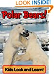 Polar Bears! Learn About Polar Bears...