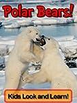 Polar Bears! Learn About Polar Bears...