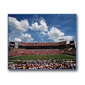 NFL Tampa Bay Buccaneers Stadium 22x28 Canvas Art by Pangea Brands