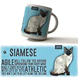 Moggies range Cat Breed Mugs, huge selection from the original metal sign company (Siamese)