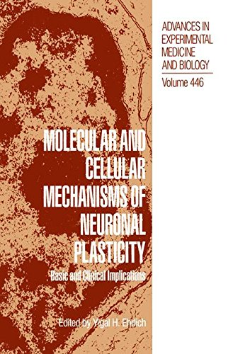 Molecular and Cellular Mechanisms of Neuronal Plasticity: Basic and Clinical Implications (Advances in Experimental Medicine and Biology)