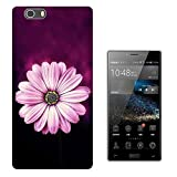 002679 - Beautiful Purple Daisy Floral Roses flowers Chic