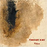 Pictures by FINNEGANS WAKE [Music CD]