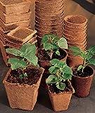 "30 Burpee Seed Starting 3"" Square Peat Pots"