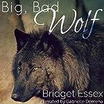 Big, Bad Wolf | Bridget Essex
