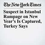 Suspect in Istanbul Rampage on New Year's Is Captured, Turkey Says | Rod Nordland