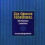 Die Große Hörbibel - Die Psalmen    N.N.