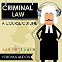 Criminal Law AudioLearn: A Course Outline Audiobook by Kurt R. Mattson Narrated by Terry Rose