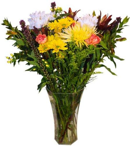 Endless Summer Bouquet - Mixed Fresh Cut Flowers - 25 Stems