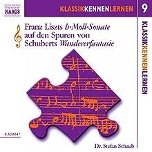 Die h-Moll-Sonate von Liszt auf den Spuren von Schuberts Wandererfantasie (KlassikKennenLernen 9) Hörbuch von Stefan Schaub Gesprochen von: Stefan Schaub
