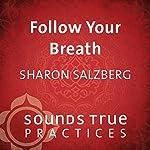 Follow Your Breath: A Foundational Technique | Sharon Salzberg