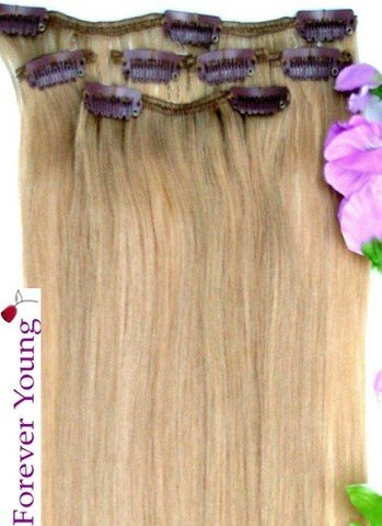 Forever Young Light Ash Blonde #16 Clip In Human Hair Extension Half Head Set - 16